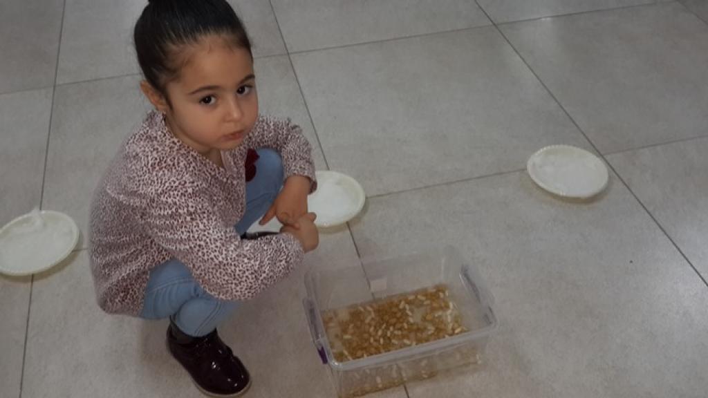 חוגי העשרה לילדים בבאר שבע
